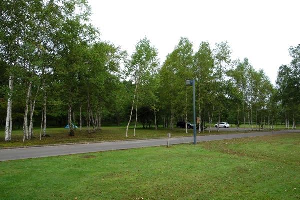 桜ヶ丘森林公園オートキャンプ場1