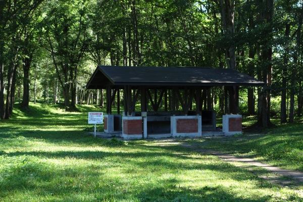 つつじ公園キャンプ場3
