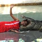 絶対におすすめ、タイのクロコダイルファーム観光