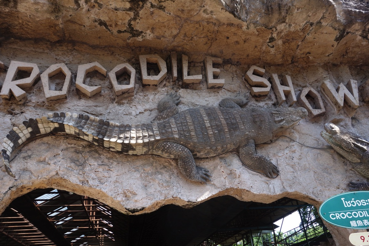 crocodilefarm4